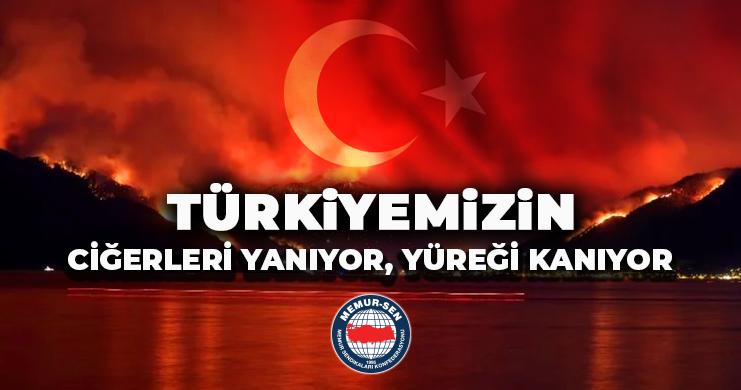 Türkiyemizin Ciğerleri Yanıyor, Yüreği Kanıyor