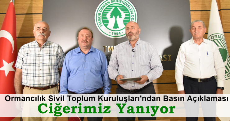 Ormancılık Sivil Toplum Kuruluşları'ndan Orman Yangınlarına İlişkin Basın Açıklaması: Ciğerimiz Yanıyor